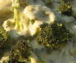 Brokolicový předkrm s jogurtem
